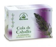 Cola-de-Caballo-El_Naturalista