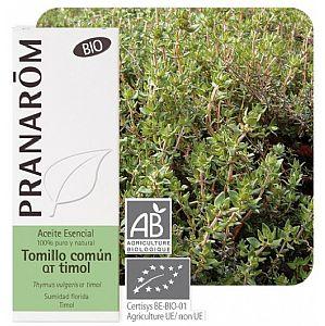 Thymus vulgaris QT timol